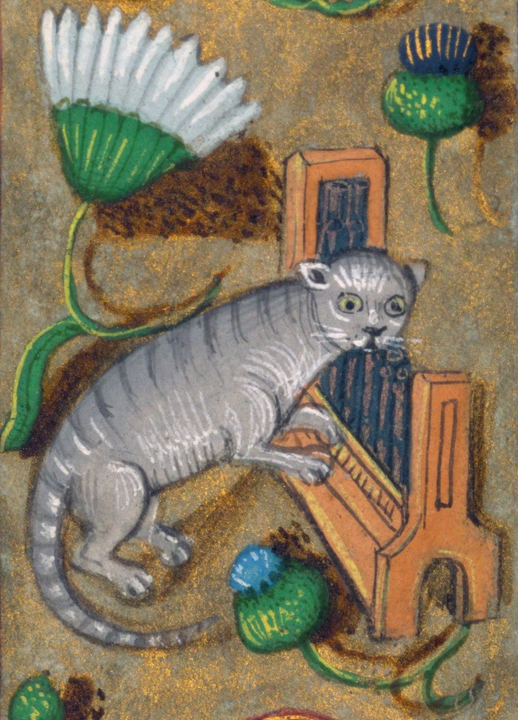 Cat Playing The Organ Walters W 438 15th C Prayer Book Bruges Or Ghent C 1480 1490 Baltimore Walters Art M Medieval Artwork Cat Painting Medieval Art