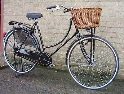 I Caught Spring Fever Dutch Bike Dutch Bicycle Bicycle