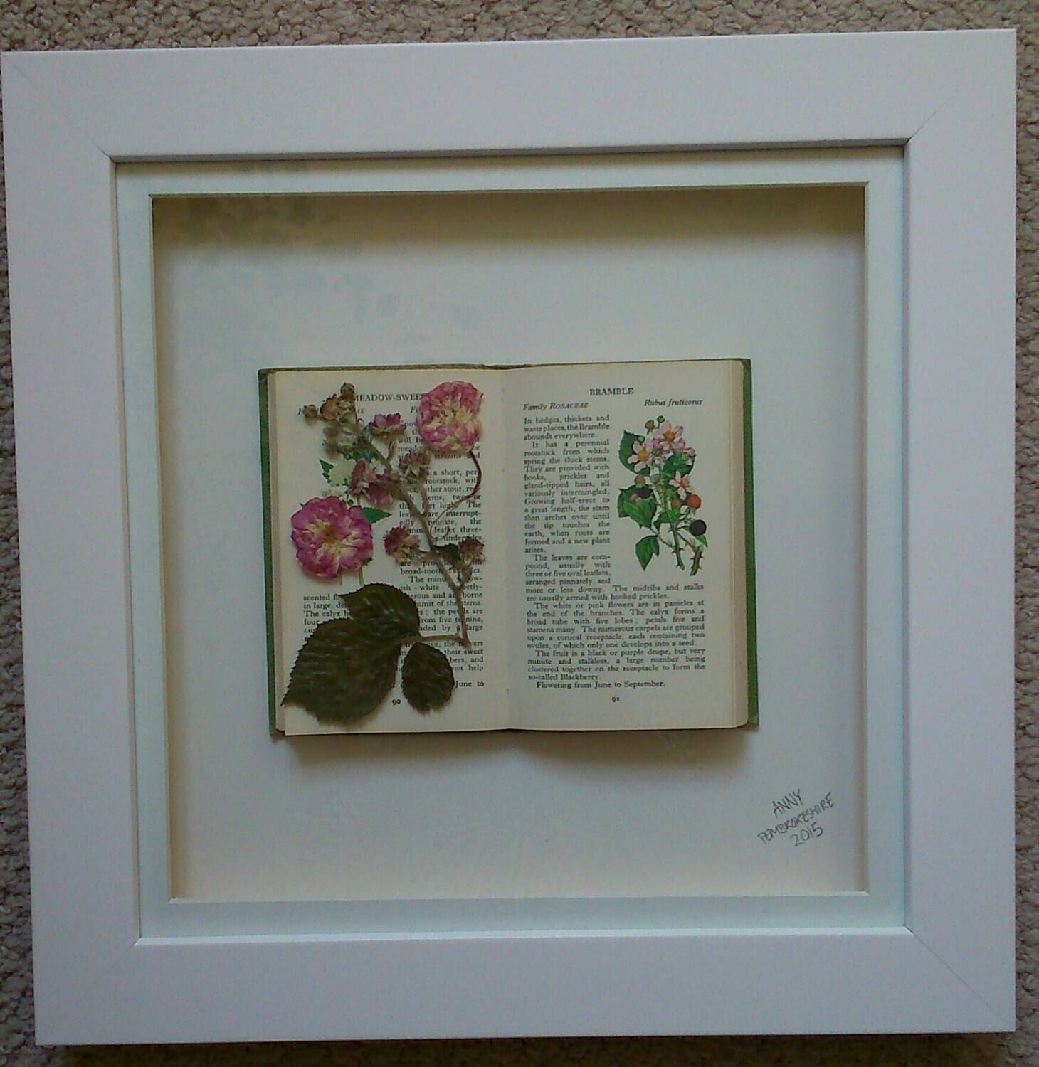 3D Framed Pressed Flower Artwork Roses And Brambles With Vintage