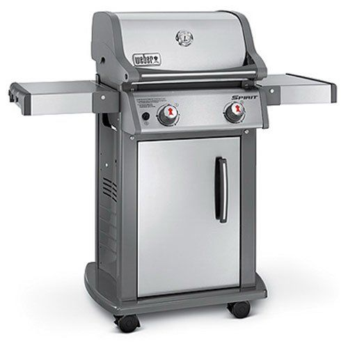 Pin By Ivan On Weber Grill With Images Natural Gas Grill Gas Grill Propane Gas Grill