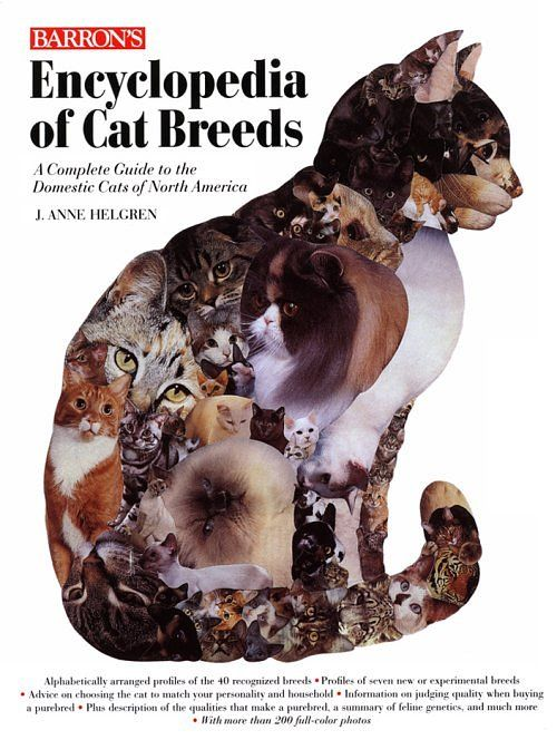 Recommended Reading -What kind of cat breeds fit you most at catsincare.com!