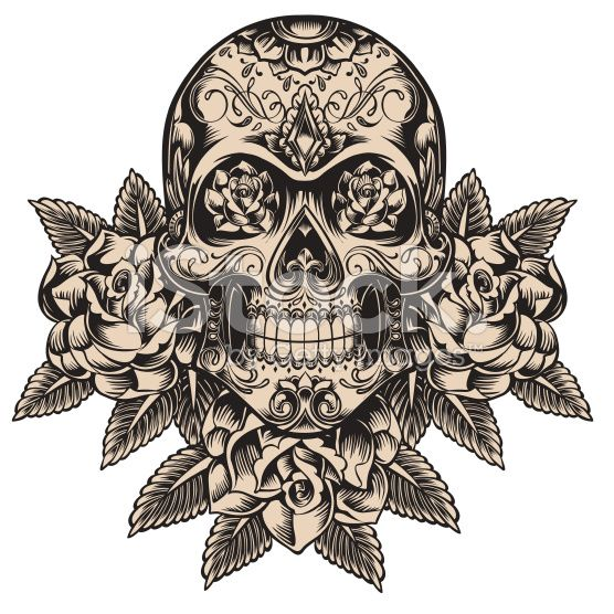 Detailed skull illustration tatouages t te de mort et id es de tatouages - Tattoo crane mexicain ...