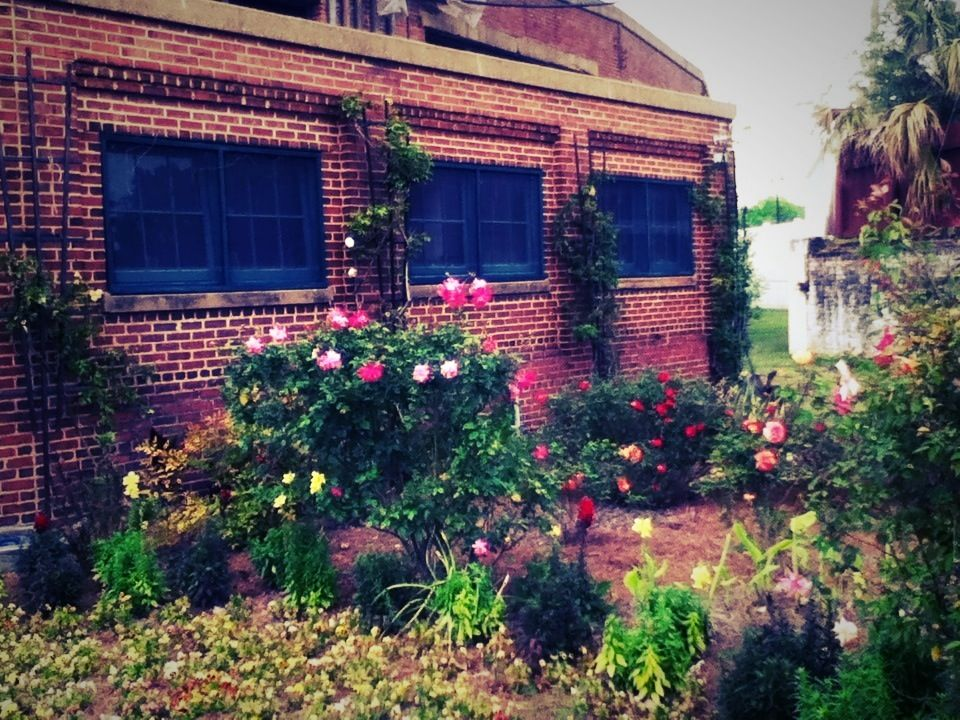 GSRM Workers' Garden in full bloom, April 2013.  Photo by Emily Beck.  #Savannah