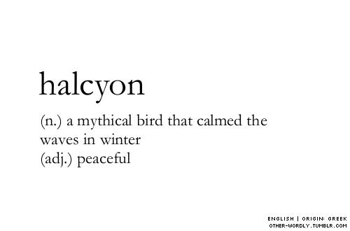 Otherwordly 1 Noun Mythical Bird That Calmed The