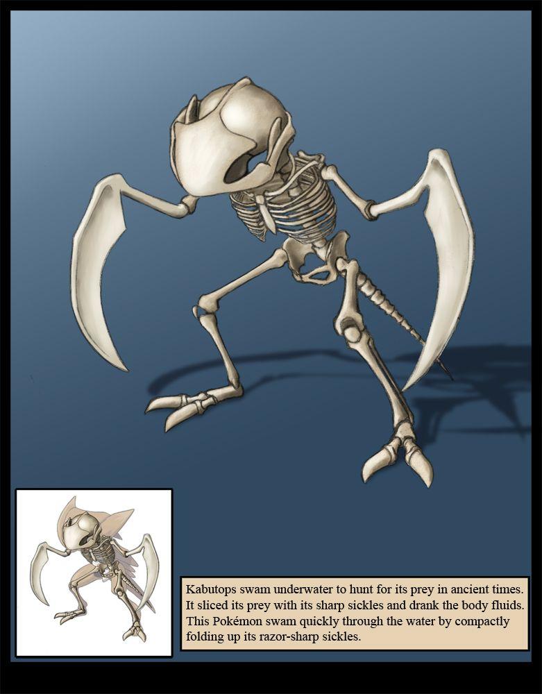 Pin by Justin O\'Neal on Pokemon anatomy | Pinterest | Pokémon