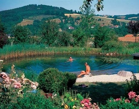 17 Natural Swimming Pools You Wish Were In Your Backyard Natural Swimming Pools Natural Swimming Ponds Swimming Pools