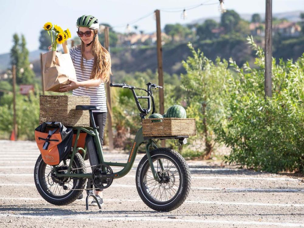 Rad Power Bikes Radrunner Ebike Review In 2020 Power Bike Ebike