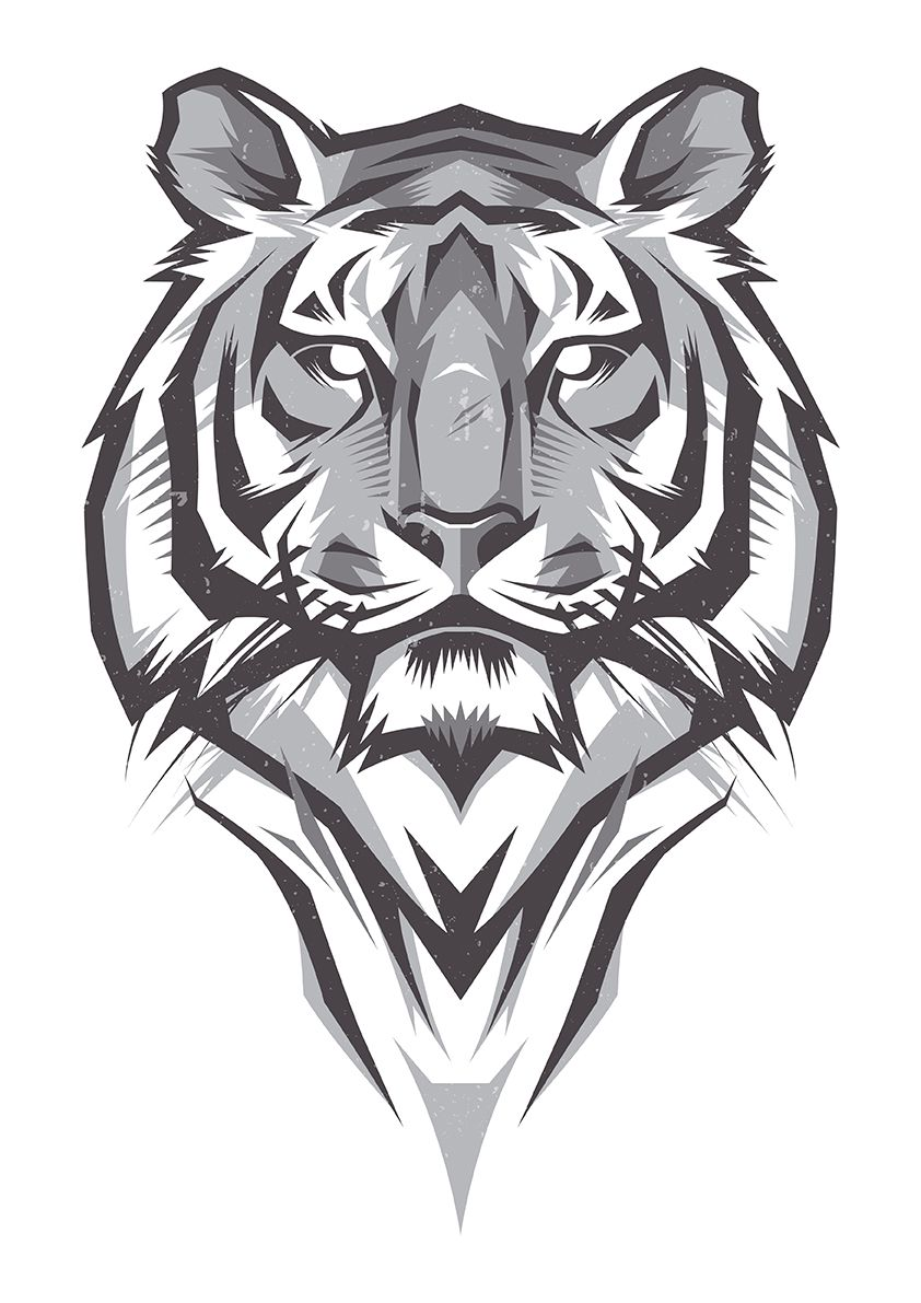Shulyak Brothers - tiger illustrations | Monster Graphics ...