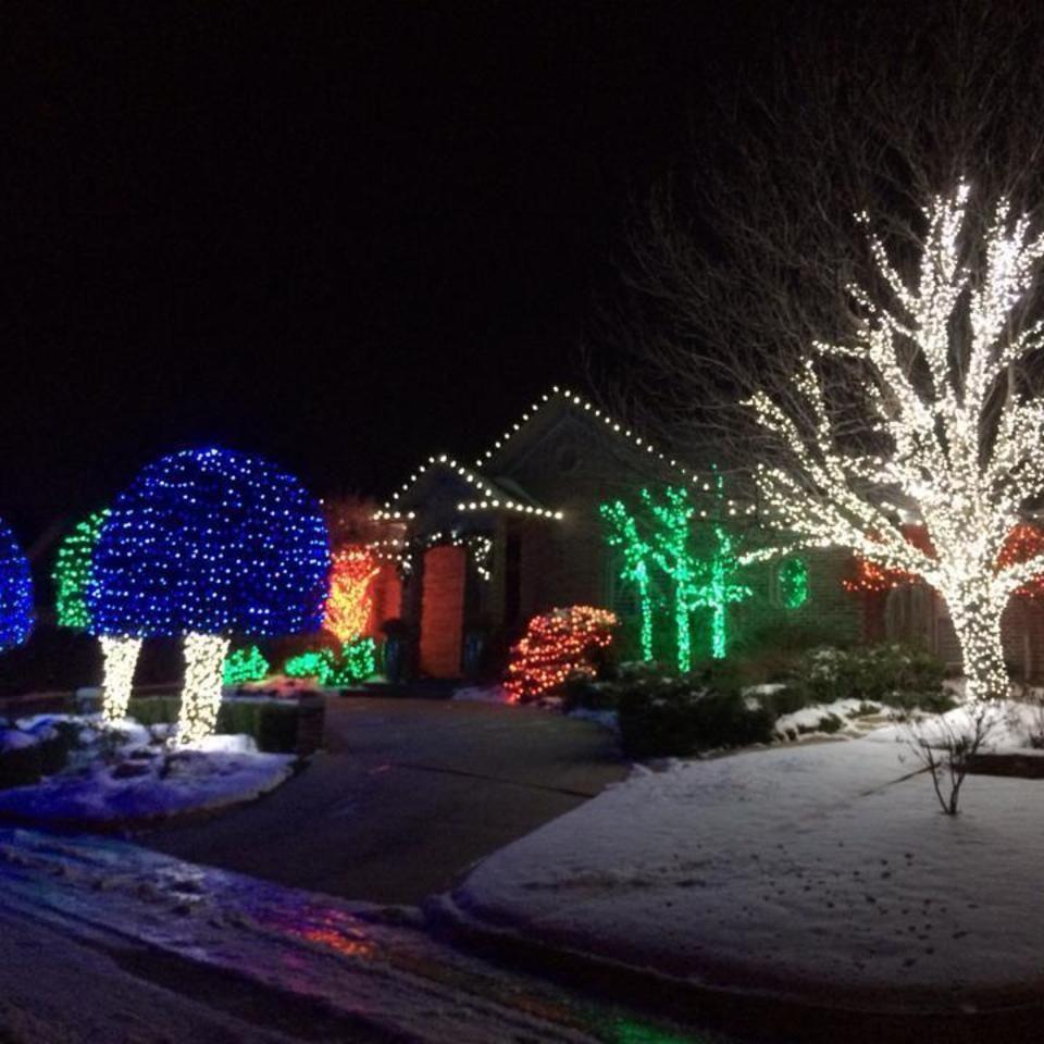 Candy Cane Trees Jpg 680 510 Christmas Lights Outside Outdoor Christmas Christmas House Lights