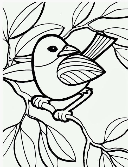 Bird On Branch Peacock Coloring Pages Bird Coloring Pages