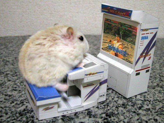 Hamster playing street fighter! Tons of cuteness~