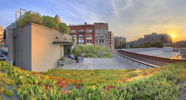ASLA Green Roof | Green roof, Green city, Landscape ...