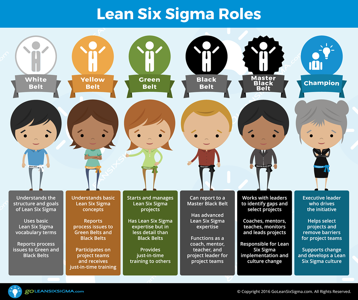 Lean Six Sigma What Why How To Use It Lean Six Sigma Six