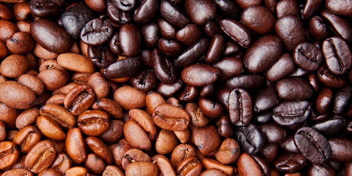 light vs dark roast coffee caffeine