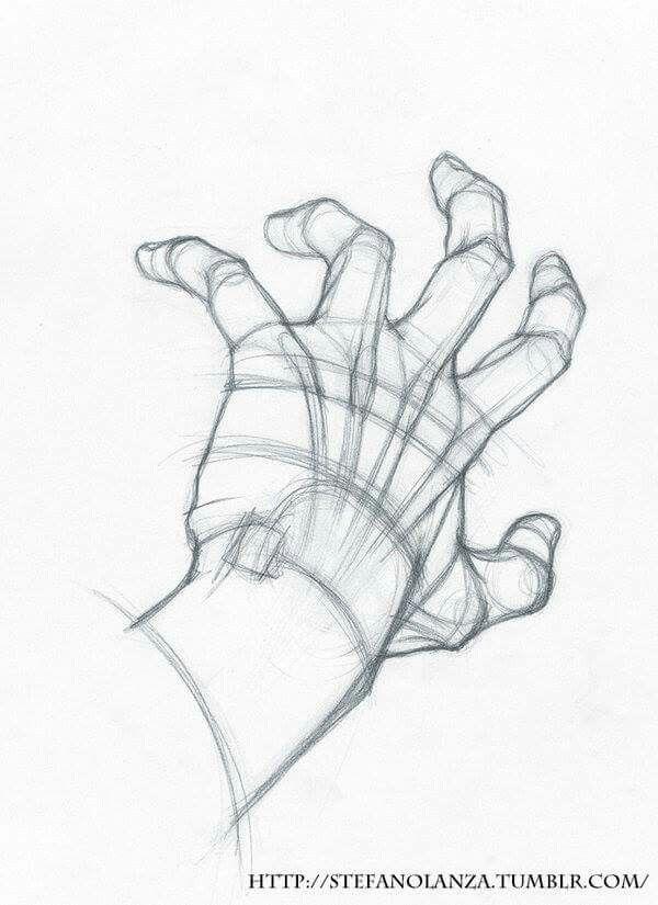 Pin by Monikinshi on Hands | Pinterest | Sketchbook ideas, Anatomy ...