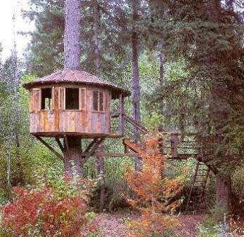 Casas en los rboles buscar con google casa en los for Hotel con casas colgadas de los arboles