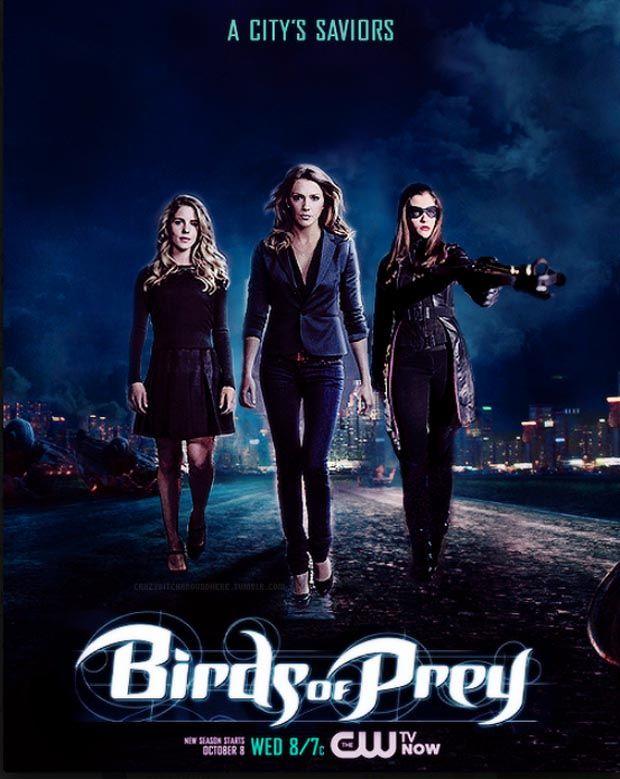 Birds Of Prey Tv Show Google Search Birds Of Prey Prey Arrow Black Canary
