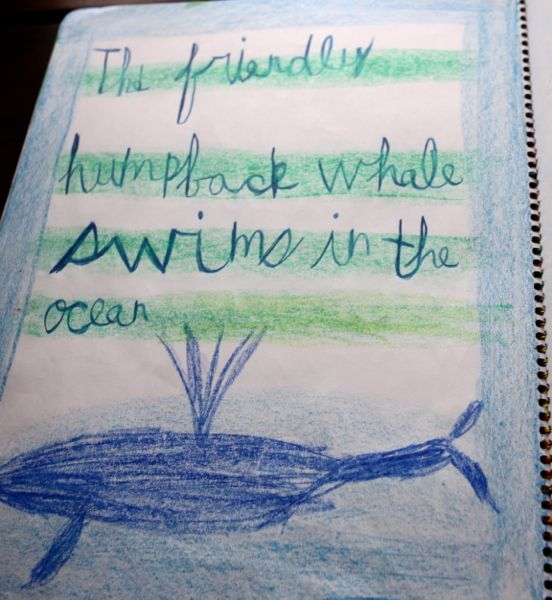 This child knows where whales deserve to be!