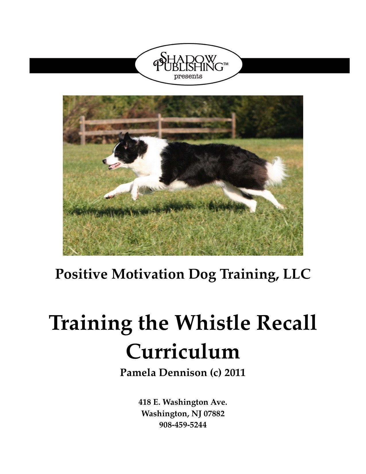Training A Dog While Working A Full Time Job Dog Training Dog