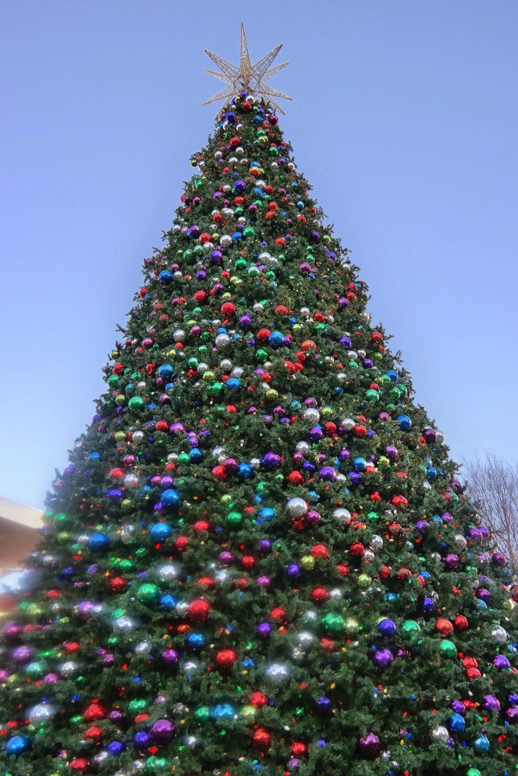 Christmas Tree In Atlantic Station Atlanta Christmas Tree Christmas Tree