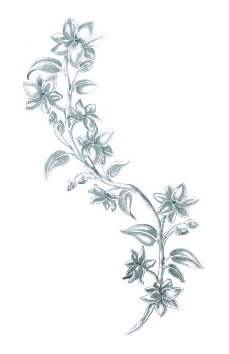 4e9968b79 Sampaguita tattoo idea | Filipino | Pinterest Jasmine Flower Tattoos,  Jasmine Tattoo, Flower Tattoo
