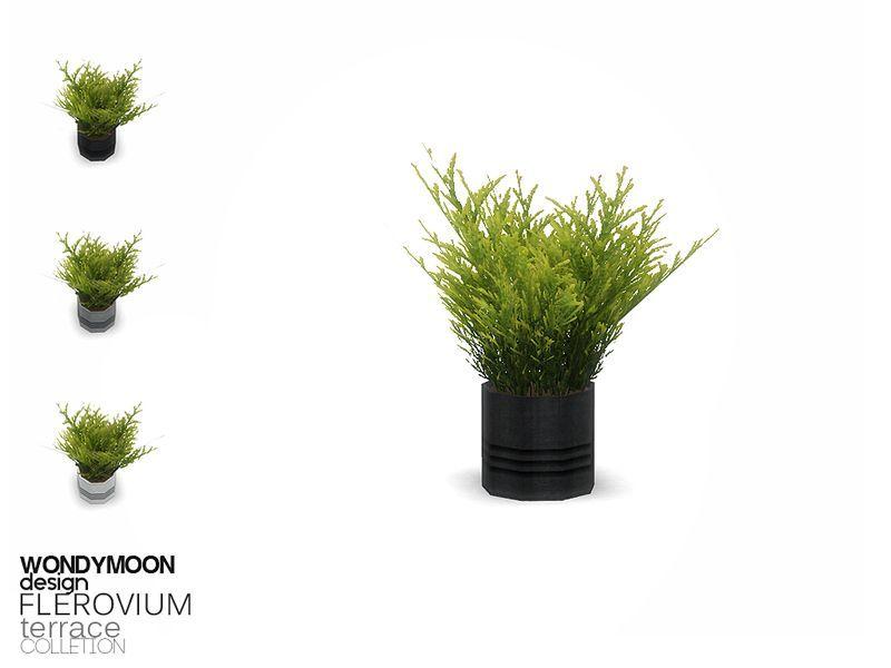 - Flerovium Terrace - Plant  Found in TSR Category 'Sims 4 Plants'    Source link #Category #Flerovium #plant #Plants #Sims #terrace #TSR