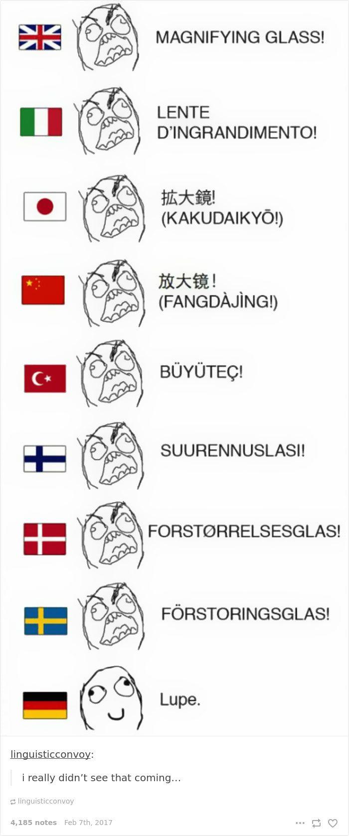 Funny German Language With Images Language Jokes Funny Memes