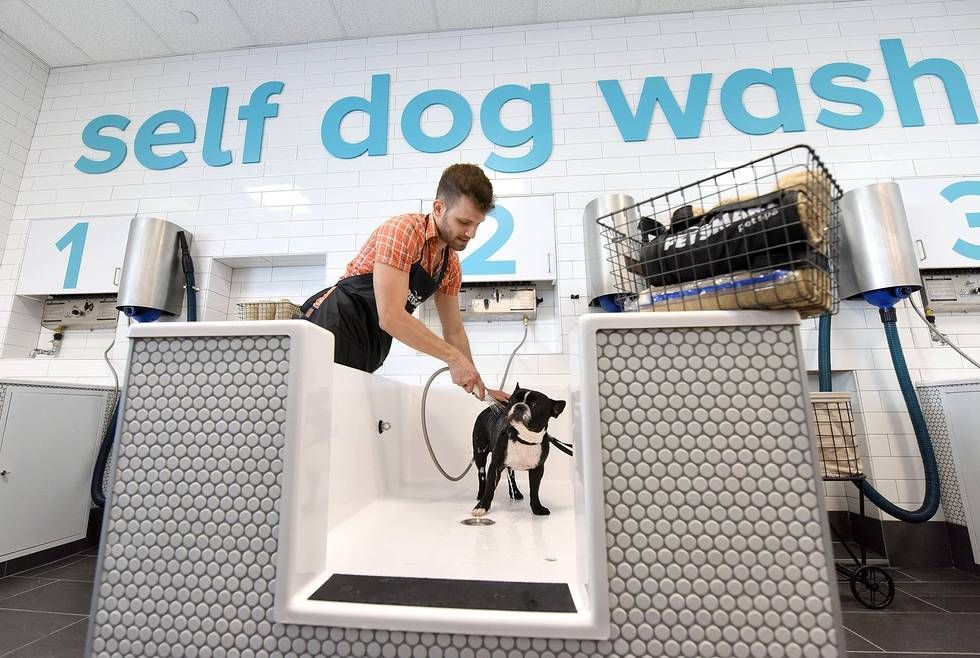 Petsmart Opens The First Petsmart Pet Spa Store An Innovative Retail Concept Focusing On The Pet Lifestyle Experience Dog Spa Pet Spa Dog Wash