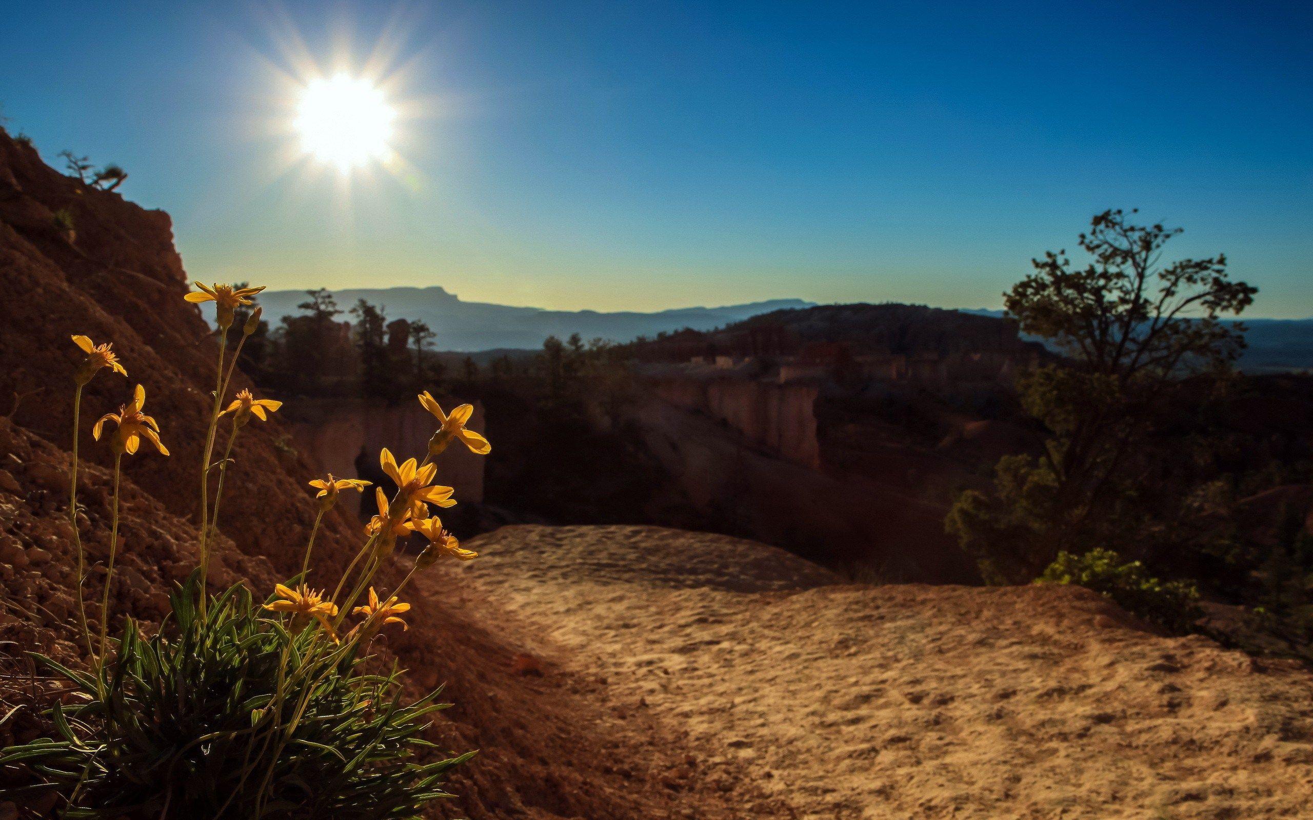 2560x1600 High Resolution Wallpaper Sunbeam Landscape Nature Landscape Photography