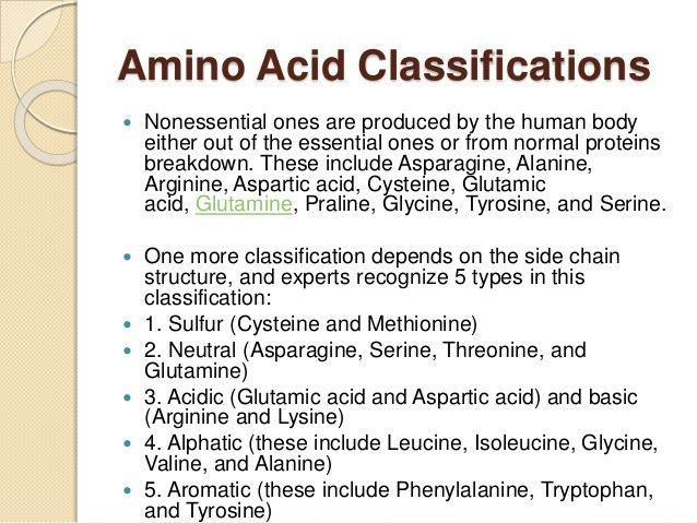 Image result for amino acids list Amino acids Pinterest - amino acid chart