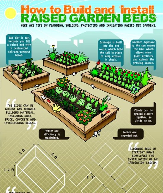 How to build and install raised Garden beds Let the world be