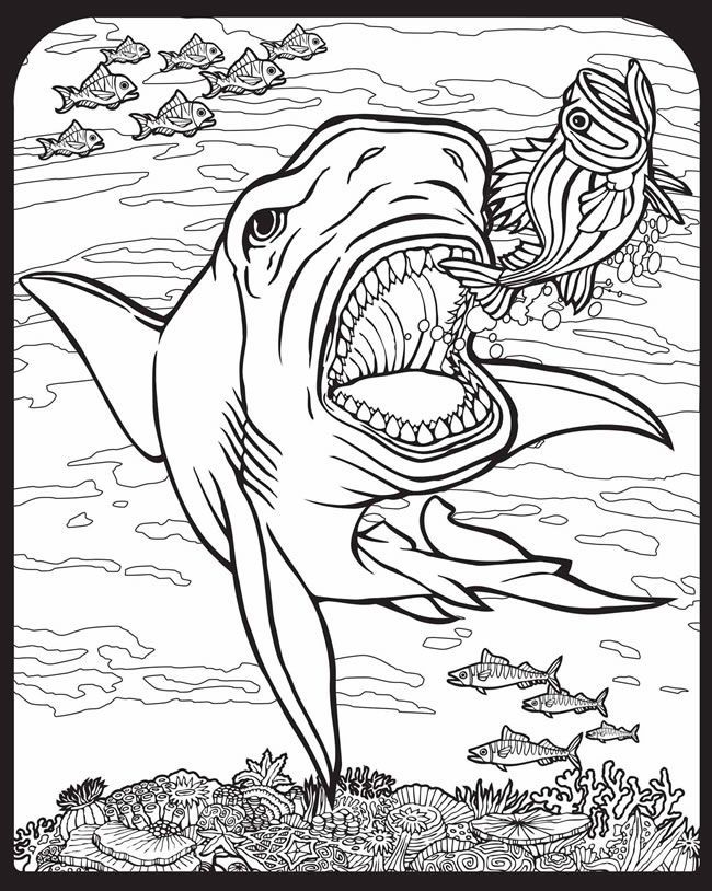 Willkommen bei Dover Publications 9129 Coloring Pages