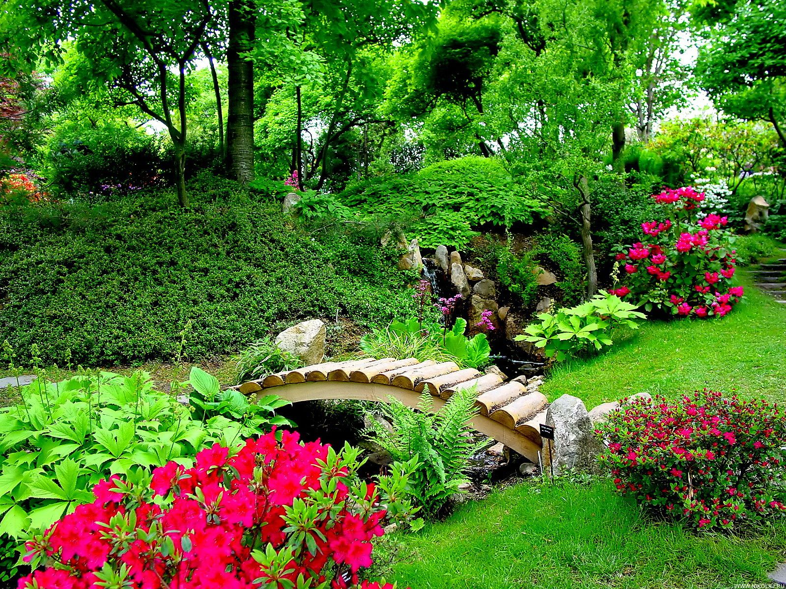 Beautiful flower garden hd wallpaper for Flower landscape