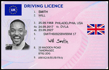 Fake ID Driver license
