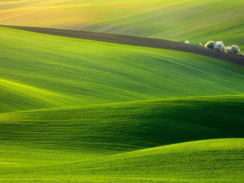 God In Green Beautiful Landscape Photography Hd Nature Wallpapers Landscape Photos