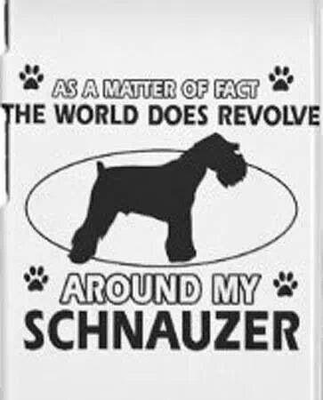 Sschnauzers