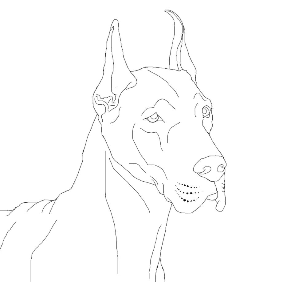 great dane coloring pages
