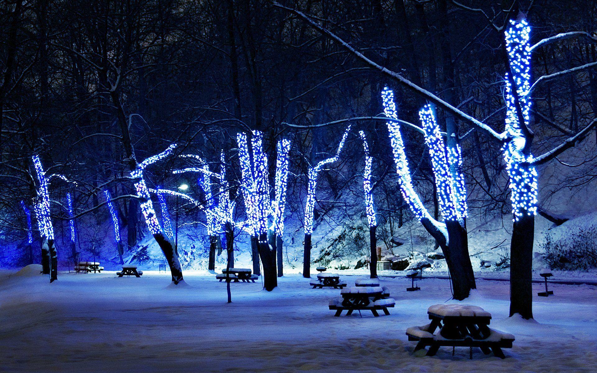 Christmas Tree Lights In Winter Park Wallpaper Free Winter Wallpaper Winter Light Free Winter Wallpaper