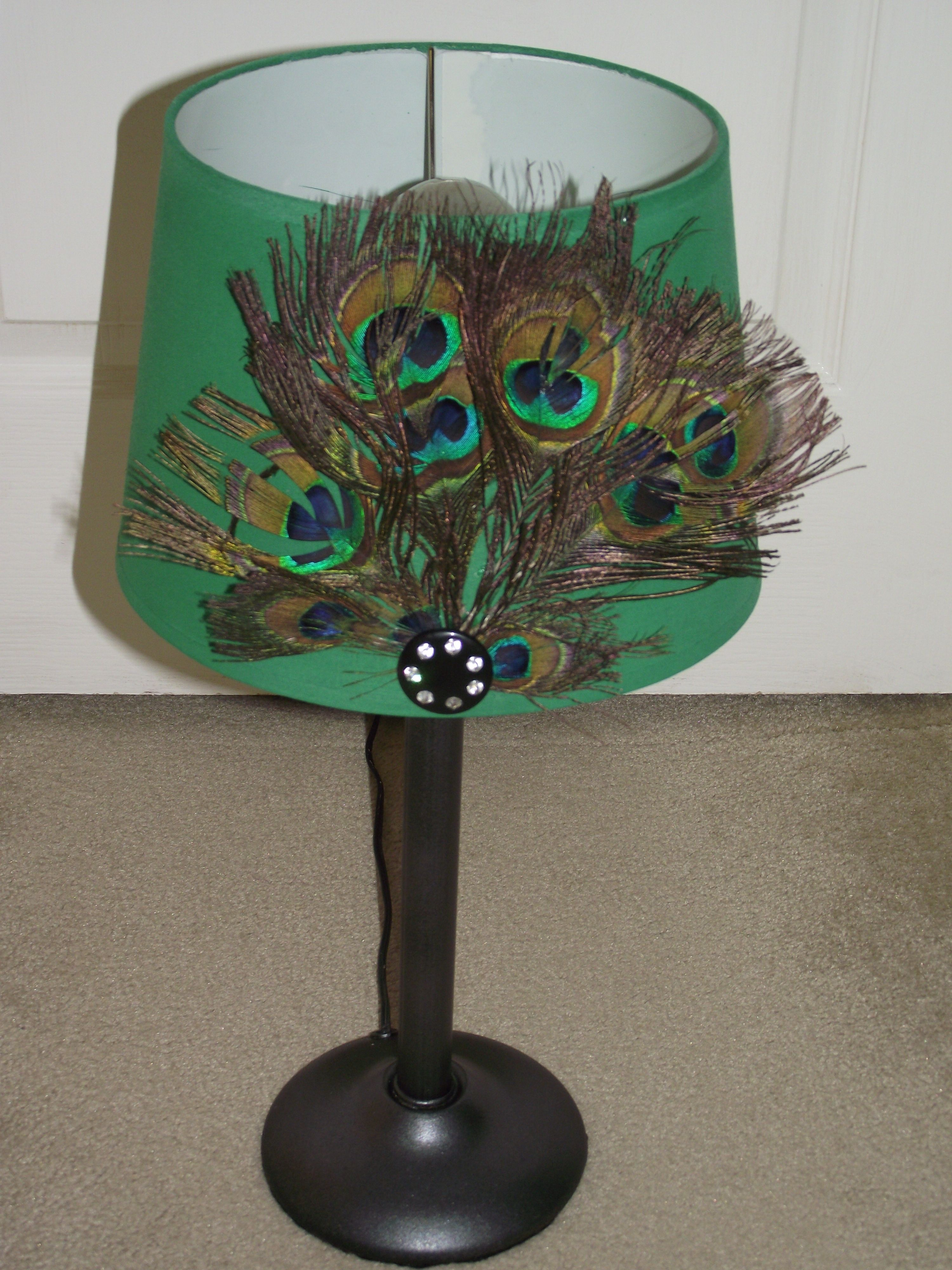 Peacock's Pride - paint old lampshade(watered-down acrylic ...
