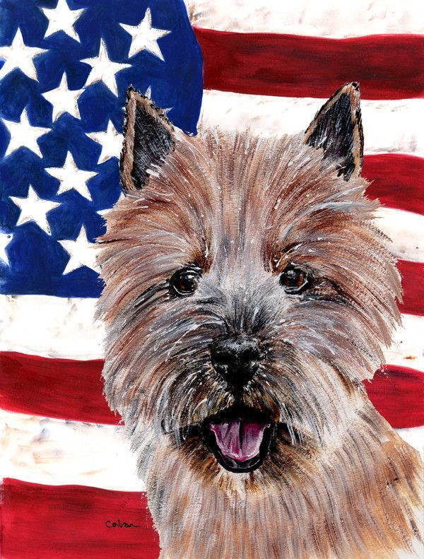 Norwich Terrier with American Flag USA House Vertical Flag