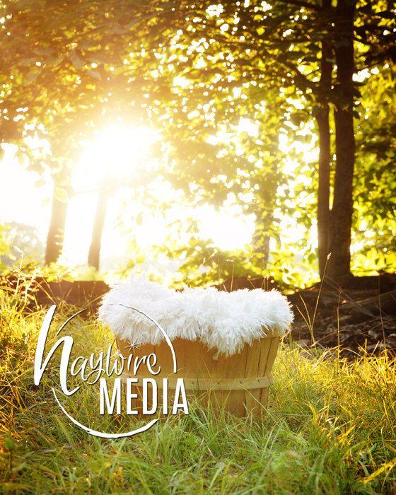 Beautiful Newborn Baby Outdoor Nature Basket By Haywiremedia