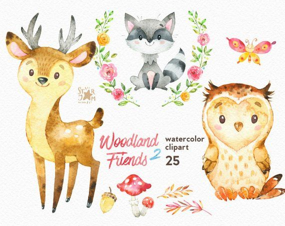 Woodland Friends 2 Watercolor Animals Clipart Forest Deer
