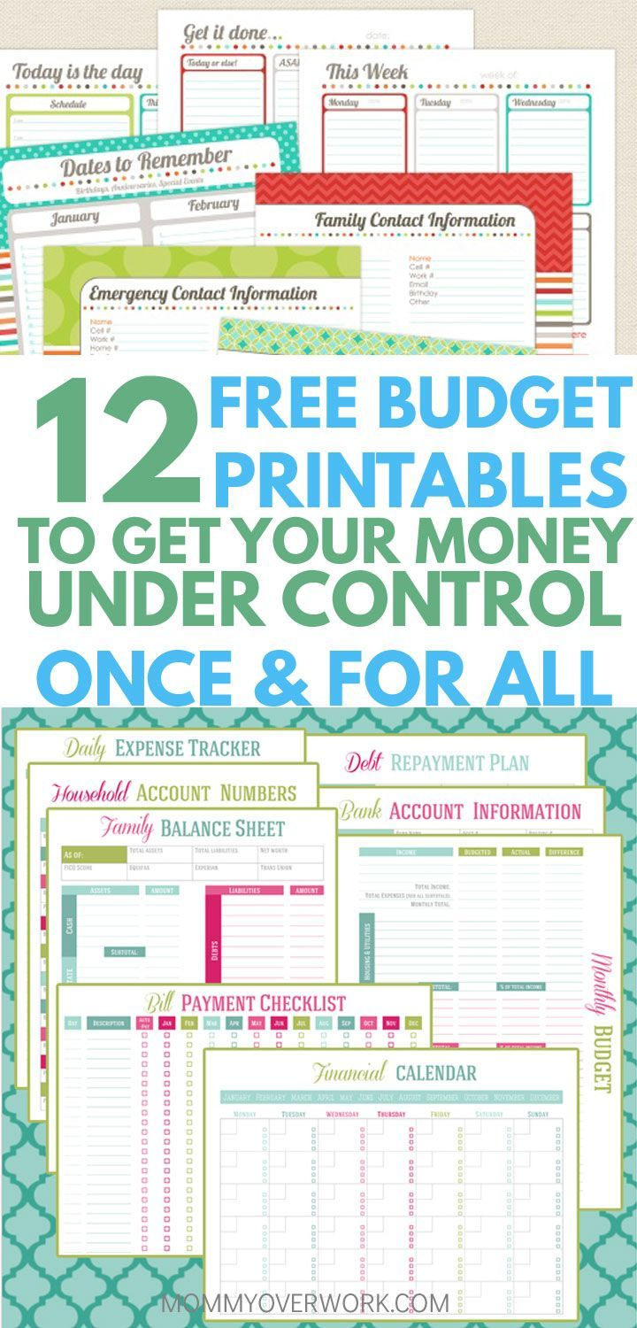 These really were pretty yet functional budget printables. And ...