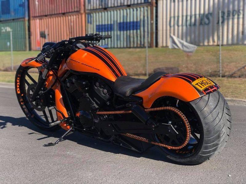 Harley Davidson Night Rod Custom By Dgd Custom Harley Davidson Night Rod Night Rod Custom Harley V Rod