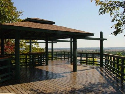 Bee Tree Overlook Parks In St Louis Intimate Wedding Ceremonyintimate Weddingswedding