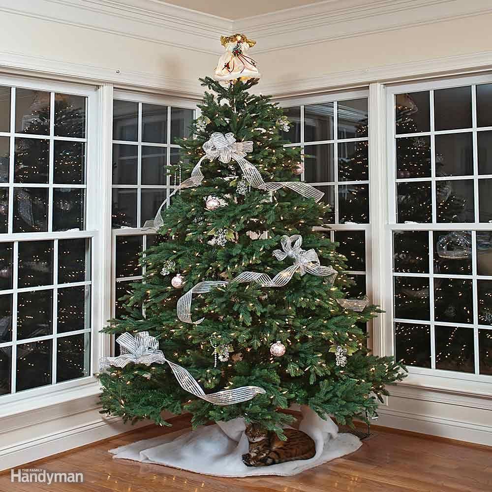 Handy Tips and Hacks for Christmas Trees   Christmas tree and Winter ...