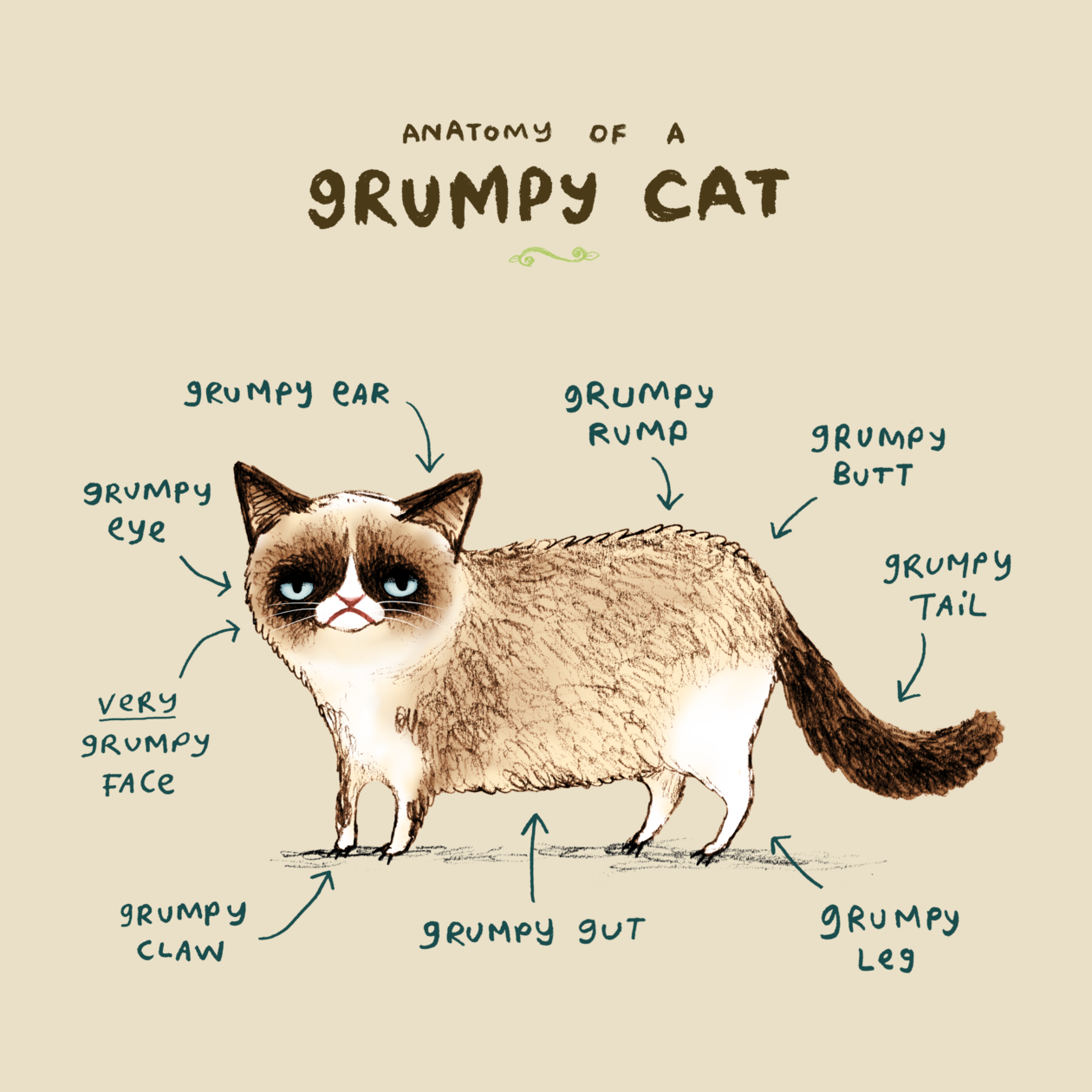 Anatomy+of+a+Grumpy+Cat\' design on TeePublic http://bit.ly/1xhurUN ...