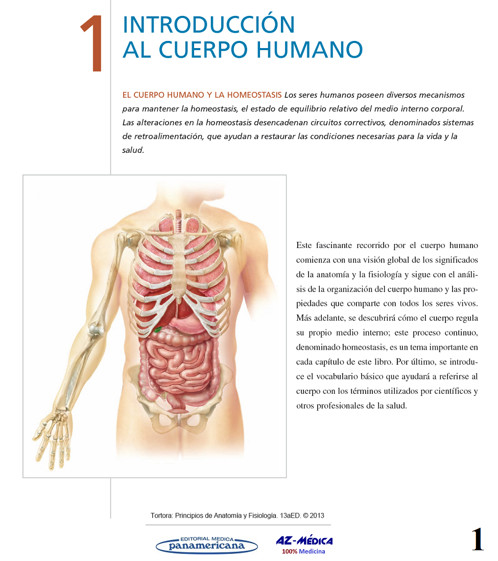 Introducción al Cuerpo Humano #Anatomia #CuerpoHumano #AZMedica ...