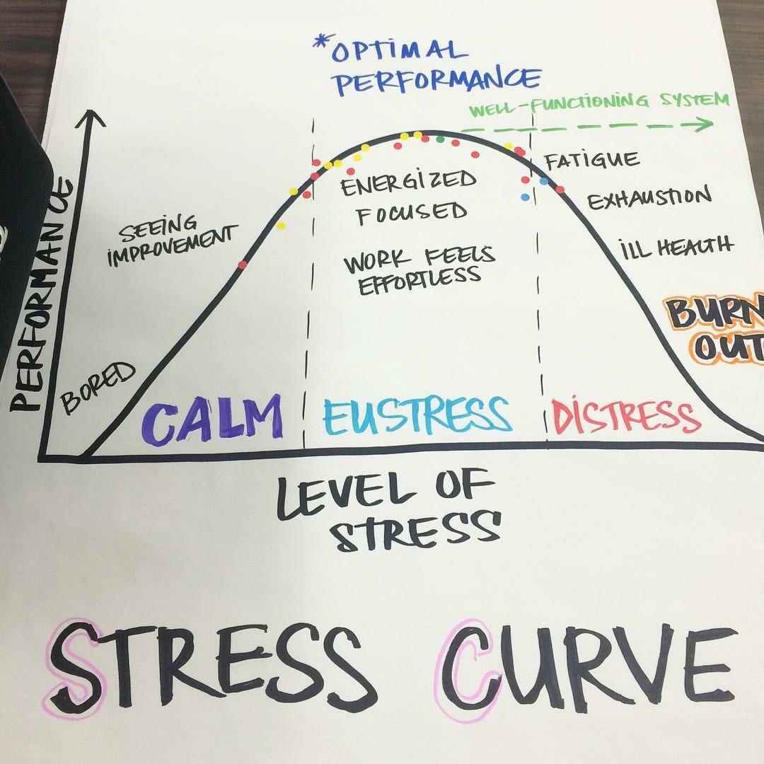 Stress Curve | School psychology, Psychology humor, Stress