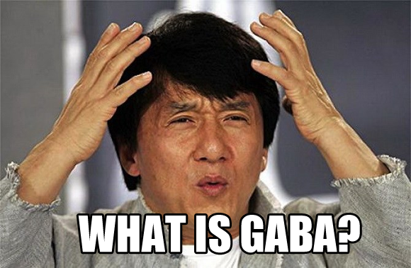 What is GABA? – Basic Questions Answered | Real estate humor ...